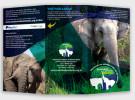 folder / externo - Santuário de Elefantes