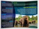 folder / interno - Santuário de Elefantes